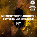Moments of Darkness - Fly